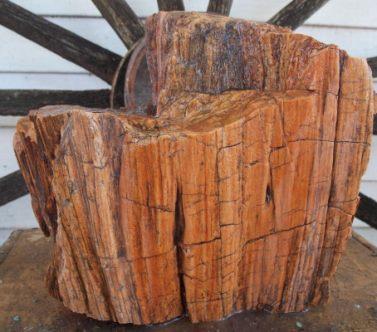 Nazipet.wood400